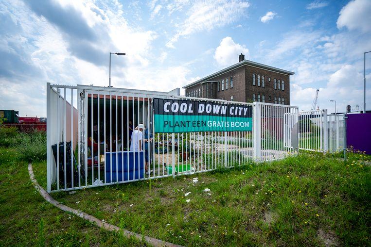 De container van Cool Down City in het Merwe-Vierhavensgebied van Rotterdam. Beeld JERRY LAMPEN