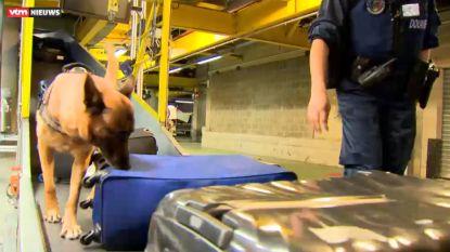 Dit jaar tot nu toe 340 kilo drugs gepakt op luchthaven Zaventem