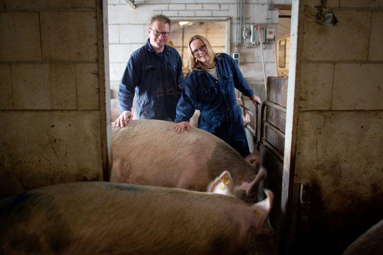 Biologische varkenshouder Koen Lipman zit met zijn vrouw Melissa Schuurman in quarantaine op hun bedrijf. Beeld Herman Engbers