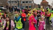 'Gele hesjes'-carnavalsstoet trekt door Steenhuffel