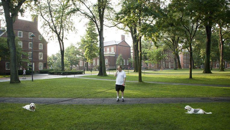 Harvard University in Cambridge, Massachusetts. Beeld null