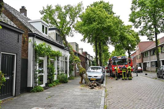 Een boom is in Breda op een huis gevallen.