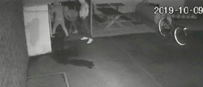 De drie jonge daders probeerden een voorraadhok naast frituur Tineke open te breken maar dat lukte niet.