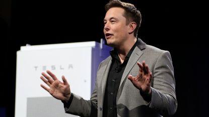 """Elon Musk herhaalt: """"Tesla heeft geen geld nodig"""""""