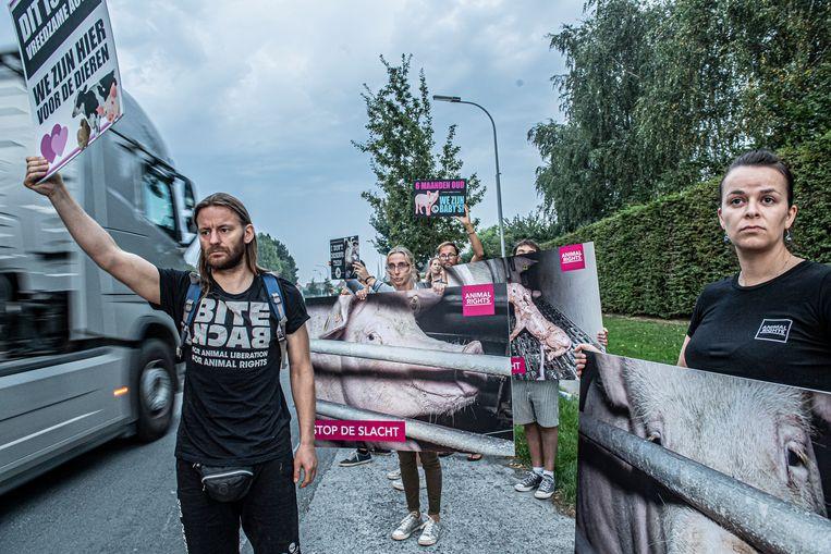De activisten tonen hun borden aan voorbijgaand verkeer.