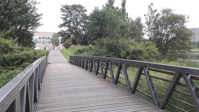 Leden van een klankbordgroep willen een autobrug als vervanging van deze smalle brug bij het Sint-Janslyceum.