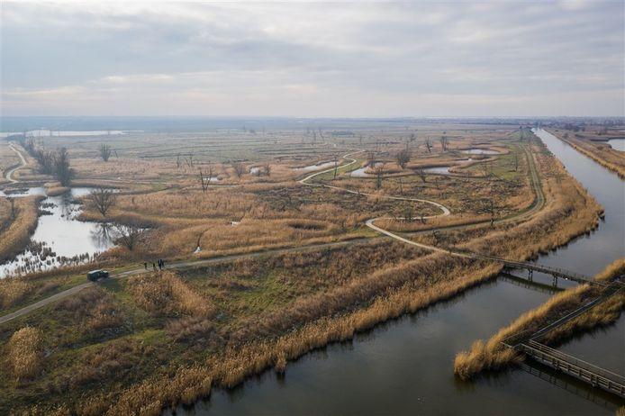 De Oostvaardersplassen vanuit de lucht.