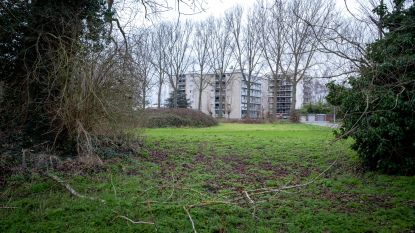 """Bewoners ongerust over bouwplannen Europaplein, gemeentebestuur sust: """"Het plein blijft groen"""""""