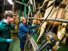 Boerin krijgt D66'er op het erf: 'Politici weten niet waar ze over beslissen'