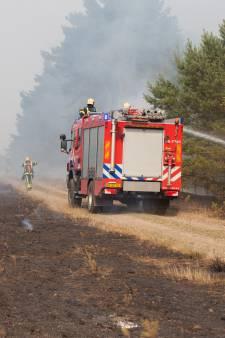 Voor brandveiligheid gaan vrijwel alle naaldbomen voor de bijl langs A28 tussen Wezep en Nunspeet