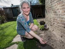 Franziska Linders uit Helmond runt 'voedselbank' voor bijen