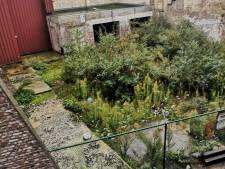 Nouvel espoir pour le jardin collectif de la Porte-aux-Oies: les acheteurs pourraient bien se retirer