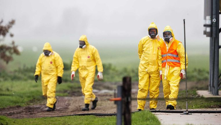 Leden van een ruimploeg troffen in november nog grote voorbereidingen bij een legpluimveebedrijf in het Nederlandse Zoeterwoude waar vogelgriep werd vastgesteld. De 28.000 kippen op het bedrijf werden afgemaakt.