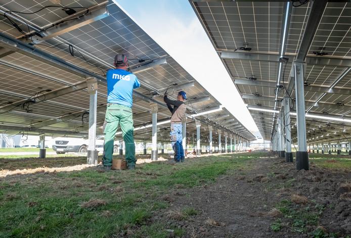 Het zonnepark dat het bedrijf Palsgaard in Zierikzee voorziet van elektriciteit.