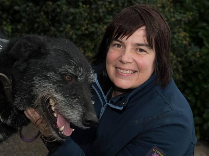 'Ik wil voor alle dieren dat ze een goed thuis krijgen'