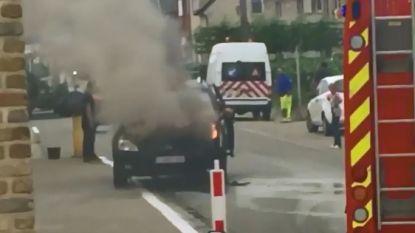 Kia uitgebrand in Denderhoutem