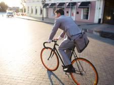 Raadslid verbaasd over plan voor parkeerterrein: 'Waarom laat je ambtenaren niet fietsen of thuiswerken?'
