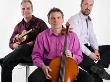 Concert van Tjechisch trio
