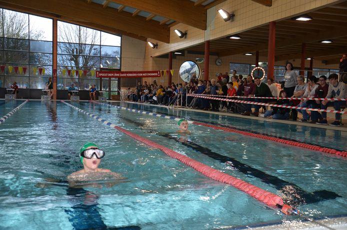 De interscholenzwemwedstrijd in zwembad De Kleine Dender in Ninove.