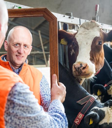 'Ik zie een gedreven man die dol is op koeien'