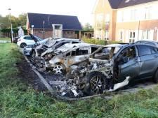 Vier auto's uitgebrand in Culemborg: 'Zwager paste op Mercedes wegens vakantie'