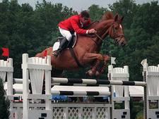 Bestuurslid Concours Hippique Eindhoven: 'Deze regio ademt paardensport'