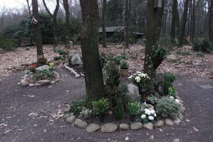 De natuurbegraafplaats in Hoog Soeren. foto Marianne Stevens