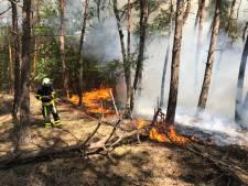 Natuurbrand in de Reeshof in Tilburg