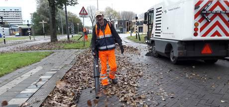 Gevallen loof in de stad prooi van Rotterdamse bladerblazers