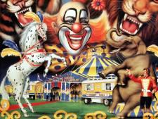 Circus mag vanwege corona niet in grote tent; voorstelling gegeven in open lucht