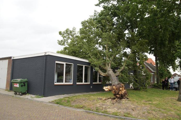 Op de Richard Wagnerstraat in Waalwijk is een boom tegen een kantoorpand gevallen.