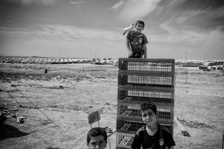 Jezidi-kinderen spelen aan de rand van het kamp. Beeld Eddy van Wessel