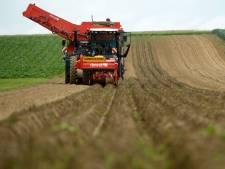 Les agriculteurs flamands ont massivement recours à des engrais illégaux