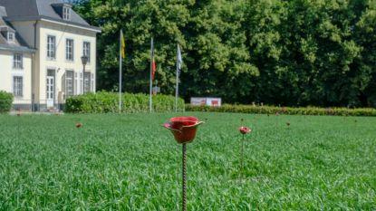 Panquinkazerne transformeert tot vredessite met klaprozen
