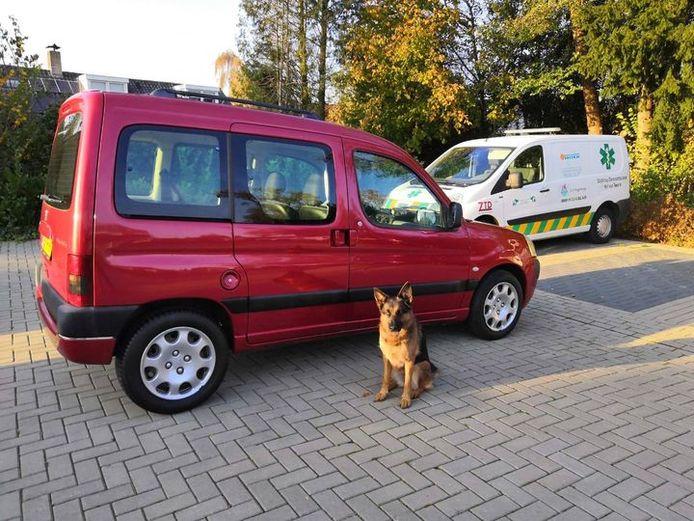 De vervangende auto van de Dierenambulance, beschikbaar gesteld door Auto Ruesink in Goor.