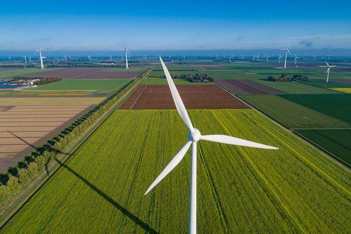 Windmolens in de Flevopolder. Ook Oss en den Bosch hebben aanzienlijke hoeveelheden nodig.