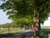 Lint eiken tekent de Dinxperlosestraatweg