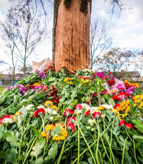 Bloemen gelegd op plek van dodelijk ongeval in Eindhoven