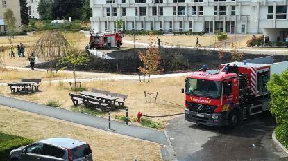 400 vierkante meter van tuin rusthuis gaat in vlammen op