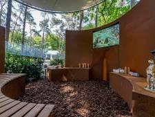 Ook Roosendaal krijgt een stiltemonument voor overleden kinderen: 'Een bijzonder plekje om bij dit verlies stil te staan'