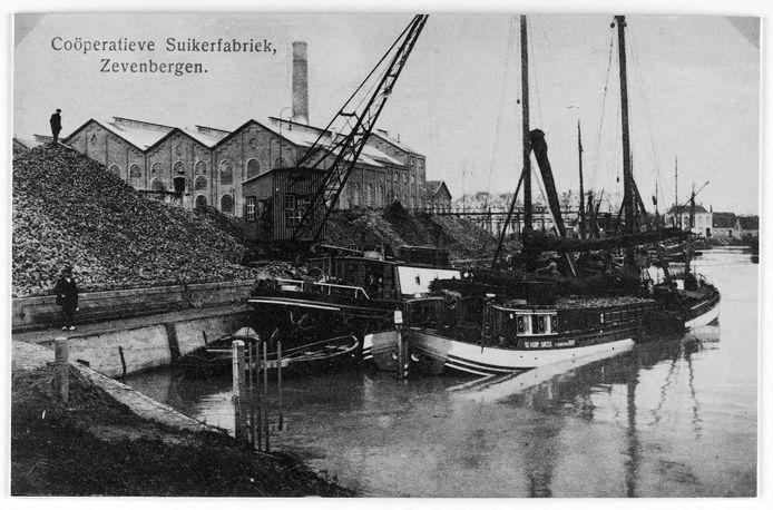 Foto van de 'cooperatief' in werking in het begin van de vorige eeuw. Op de achtergrond het Huis Steeland. In dit gebied gaat zich de ontwikkeling van Zevenbergen-Noord voltrekken.