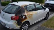 Haag, auto en carport in brand