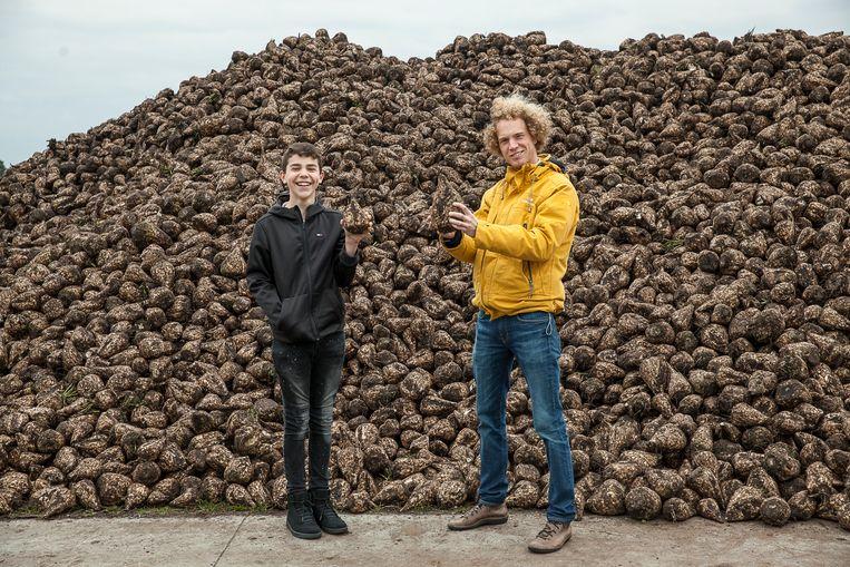 Jurre van den Berg, correspondent Noord Nederland, voor een berg suikerbieten. Beeld Harry Cock