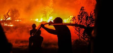 Portugal geteisterd door hevige bosbranden; vier brandweermannen gewond