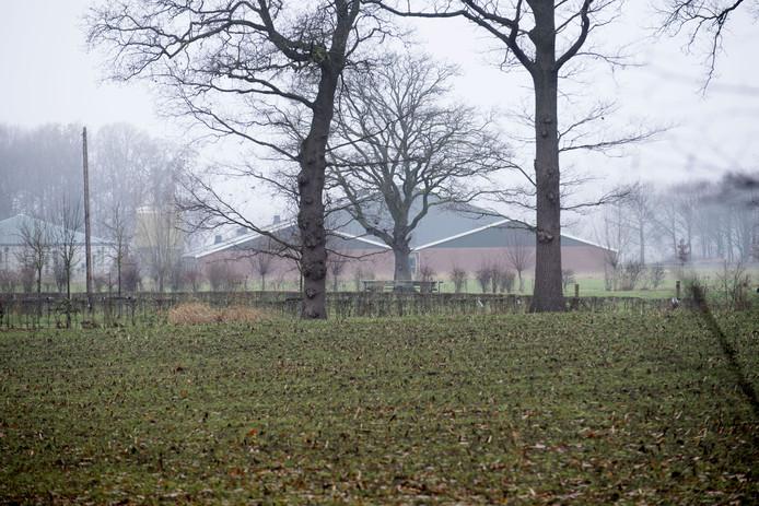 Volgens wethouder Patricia Hoytink mag de kwestie rond de megastal aan de Walemaatweg bij Geesteren niet de leidraad vormen bij het maken van het nieuwe bestemmingsplan buitengebied.
