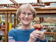 Annemieke begroet elke morgen haar cactussen en vetplanten: 'Mijn ouders leven voort in dit leuke plantje'