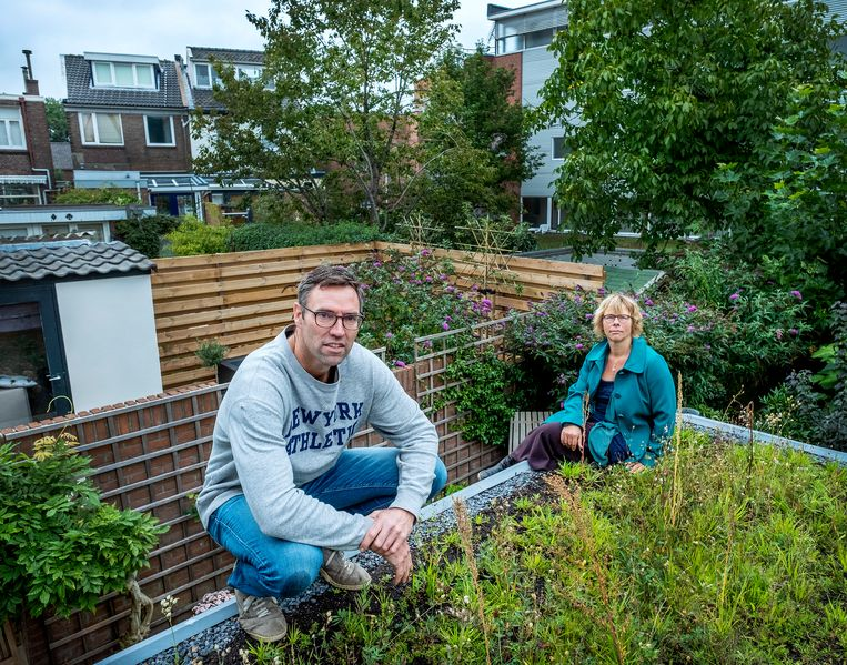 Adriaan Mosterman en Kirsten Notten op een van de groene daken in de Zwolse wijk Assendorp. Beeld Patrick Post