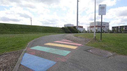 Eerste regenboogzebrapad in Brugge ligt op Finse piste en er komt binnenkort ook één in de binnenstad