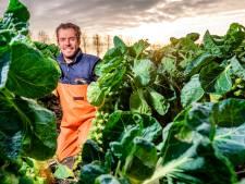 Boer heeft steeds meer moeite met een opvolger vinden: verdwijnen ze straks volledig uit onze regio?