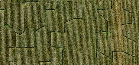 Frustraties bij boeren in Dronten over 'Nieuwe Natuur'